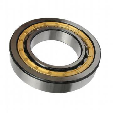 Chik Brand 95dsf01 Dducm 95dsf01 2RS Deep Groove Ball Bearing Gcr10 Bearing Steel P6 Grade 95*120*17mm