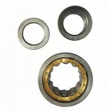 SKF Cylindrical Roller Bearing Nu2216ecp